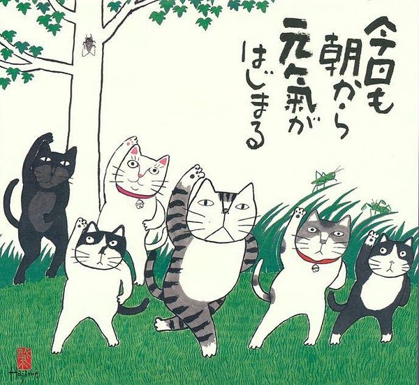 相册详情:岡本 肇(Okamoto Hajime) - 豆瓣 Tap the link for an awesome selection cat and kitten products for