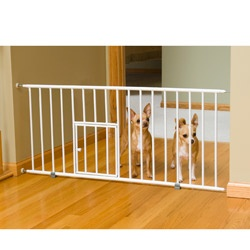 @Overstock - At just 18 inches tall, this Carlson Mini Pet Gate is the perfect gate for small breeds and puppies. This gate features a pressure mount system that is quick and easy to set up and wont leave marks or scuffs on your wall.http://www.overstock.com/Pet-Supplies/Carlson-Mini-Pet-Gate-with-Pet-Door/4097527/product.html?CID=214117 $26.10