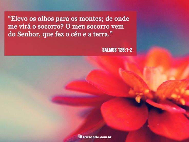 Elevo os olhos para os montes; de onde virá meu socorro? O meu socorro vem do Senhor, que fez o céu e a terra. Salmos 126:1-2