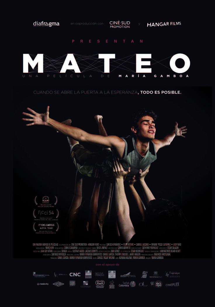 Mateo. María Gamboa. 2014