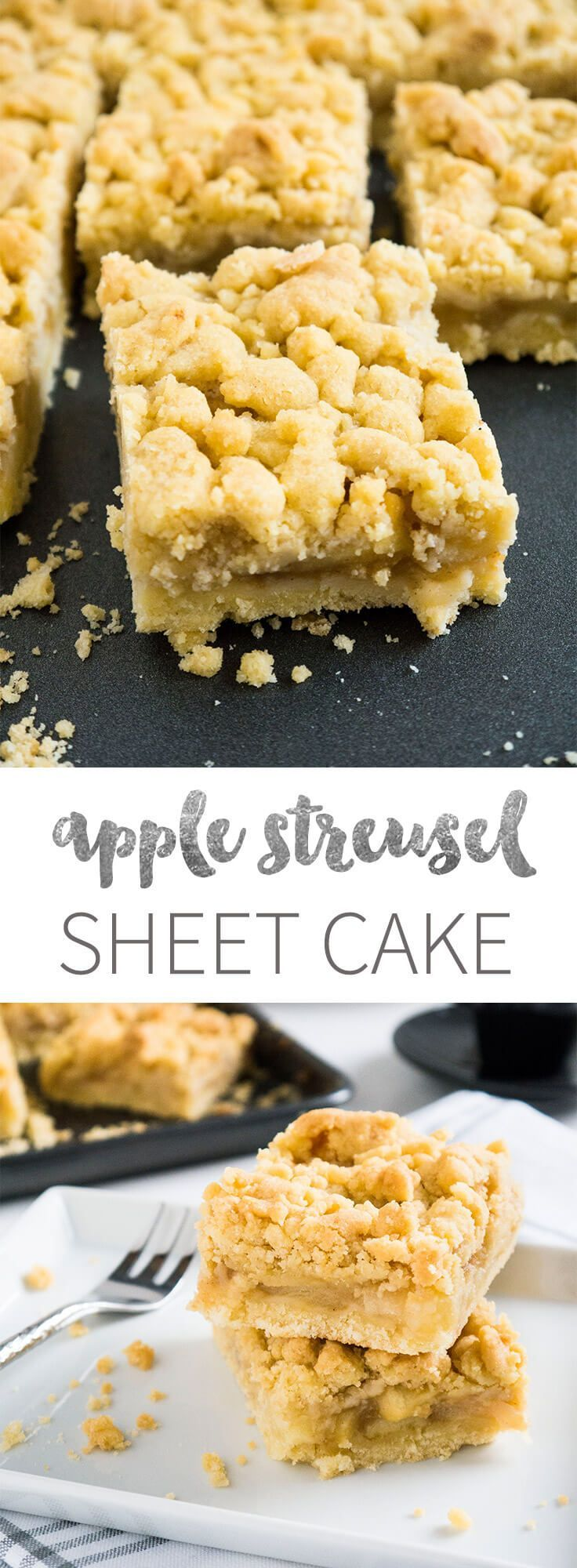 My Apple Streusel Sheet Cake is extra moist and fruity! It's made with fresh apple chunks and apple sauce plus a crumb topping.