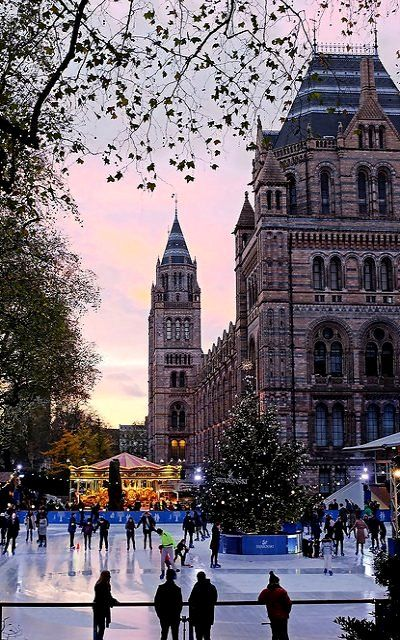 Natural History Museum at Christmastime, London, England   by kevinoconnor1000