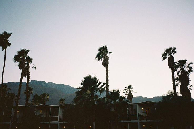 Palm Springs and Venice Beach, June 2013.