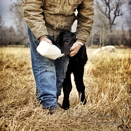 Tender, sweet images from a cattle-ranching photographer
