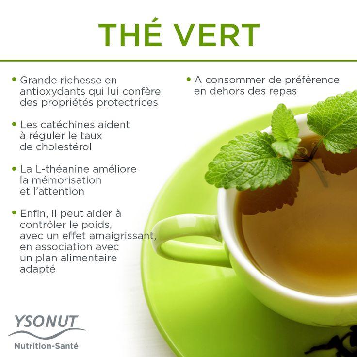 Offrez-vous une pause réconfortante et boostez vos défenses grâce au thé vert. Saviez-vous que c'est l'une des boissons les plus consommées au monde ? Voici quelqu'uns de ses bienfaits