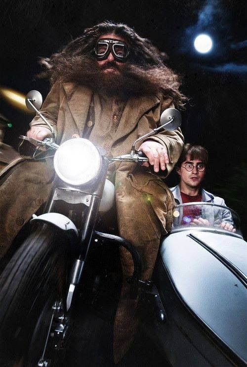 Hagrid and Harry escape the Death Eaters.... Harry Potter and the Deathly Hallows