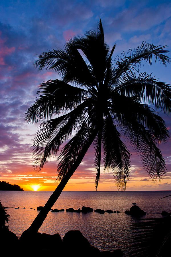 ✮ The sun sets at Anini Beach, on the north side of the island of Kauai, in Hawaii