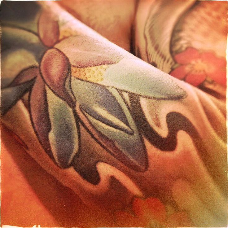 #tattoo #tatuaggi #tatuaggio #daktattoo #ink #color