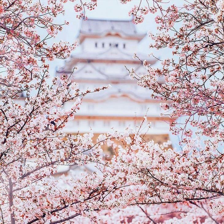 Castelo de Himeji-Jo