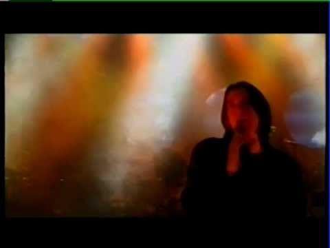 Αγριολούλουδο (Wildflower) - Yiannis Kotsiras (Live) - YouTube