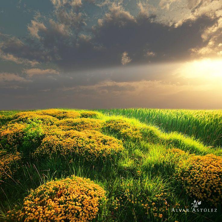 Green and yellow by Alvar Astúlez on 500px