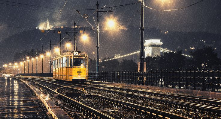 Lonely tram in the rain
