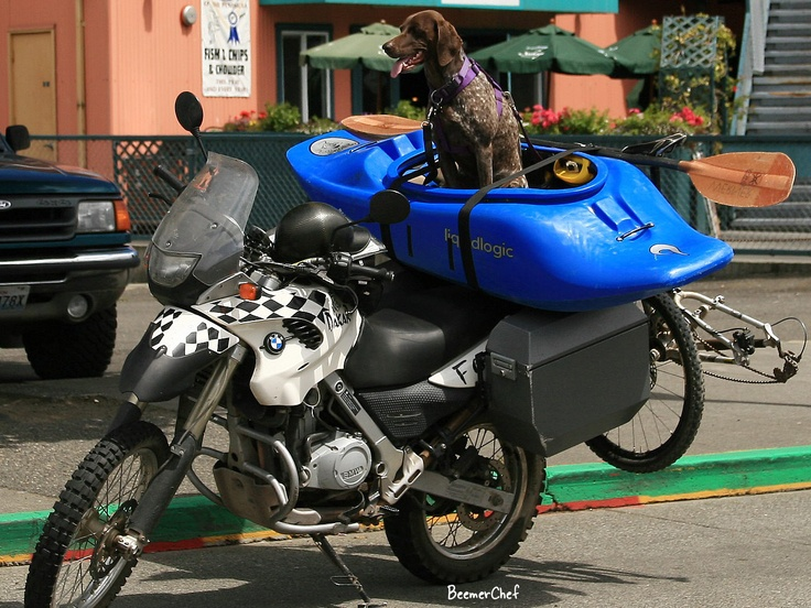 Motolady Is It Just Me Or Does This Look Like The Perfect Set Up For A Day Of Fun Bicycle Mini Kayak Motorcycle And Mans Best Friend