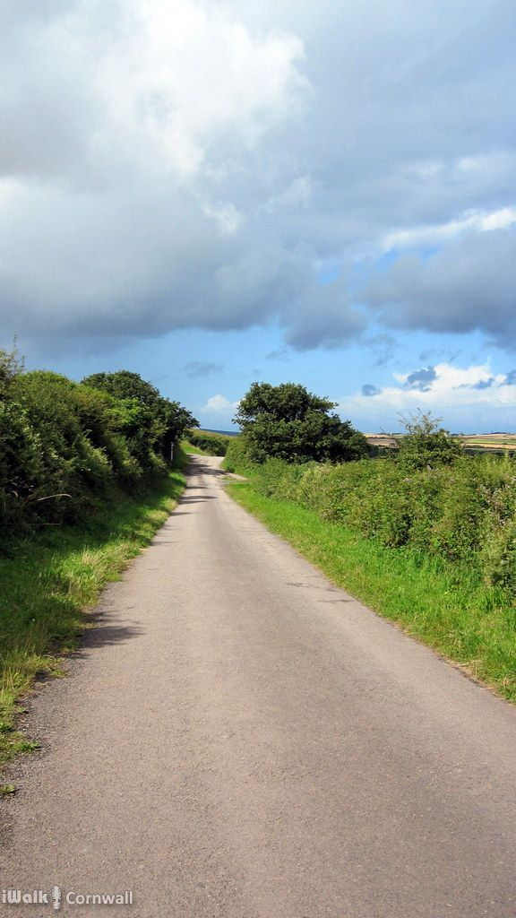 Lane to Trewethern, near St Kew, Cornwall