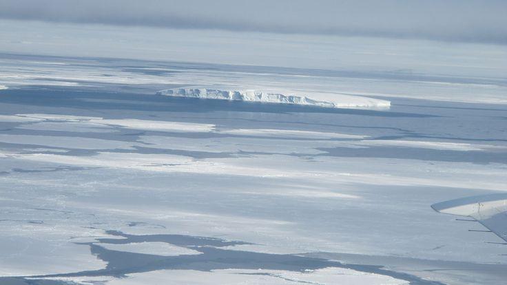 """Ross Denizi, dünyadaki son bozulmamış deniz ekosistemine sahip olduğu düşünülen bir kenar denizi. Avrupa Birliği ve 24 ülke arasında yapılan anlaşma uyarınca 35 yıllığına """"Genel Koruma Bölgesi"""" ilan edildi. Aralık 2017'den itibaren bir milyon 500 bin kilometrekarelik alanda oluşturulan deniz parkında avlanmaya izin verilmeyecek.   #Ekoloji #Çevre #Yeşil #Deniz #ÇevreKoruma #Sürdürülebilirlik #Doğa"""