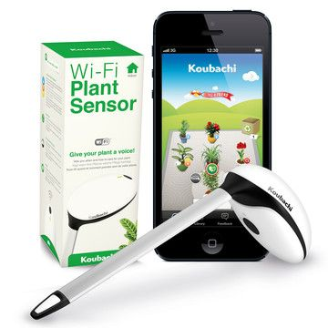 Koubachi: Wi-Fi Plant Sensor Indoor, at 4% off!