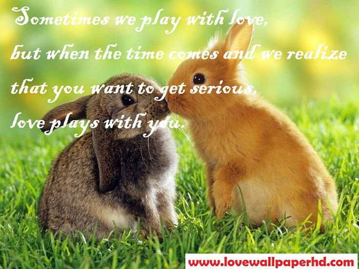 Sometime we play with love but when the time comes and we realize that you want to get serious, love plays with you.