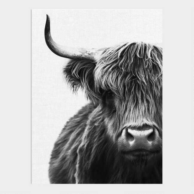 Capturing The Essence Of Animal Beauty Our Portrait Showcases A Scruffy Highland Scottish Cow Using A In 2020 Framed Canvas Wall Art Canvas Wall Art Animal Wall Art