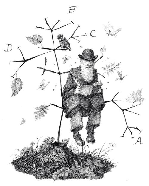 """charles darwin and the tree of The first module of the course introduces charles darwin's revolutionary concept  of a """"tree of life"""" depicting the evolution of all life from."""