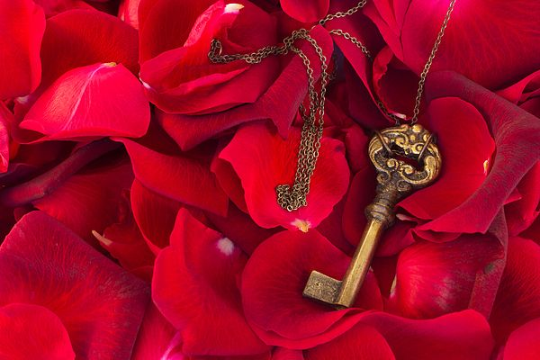 Key with crimson rose petals as a symbol of love by Anastasy Yarmolovich #AnastasyYarmolovichFineArtPhotography  #ArtForHome #vintage