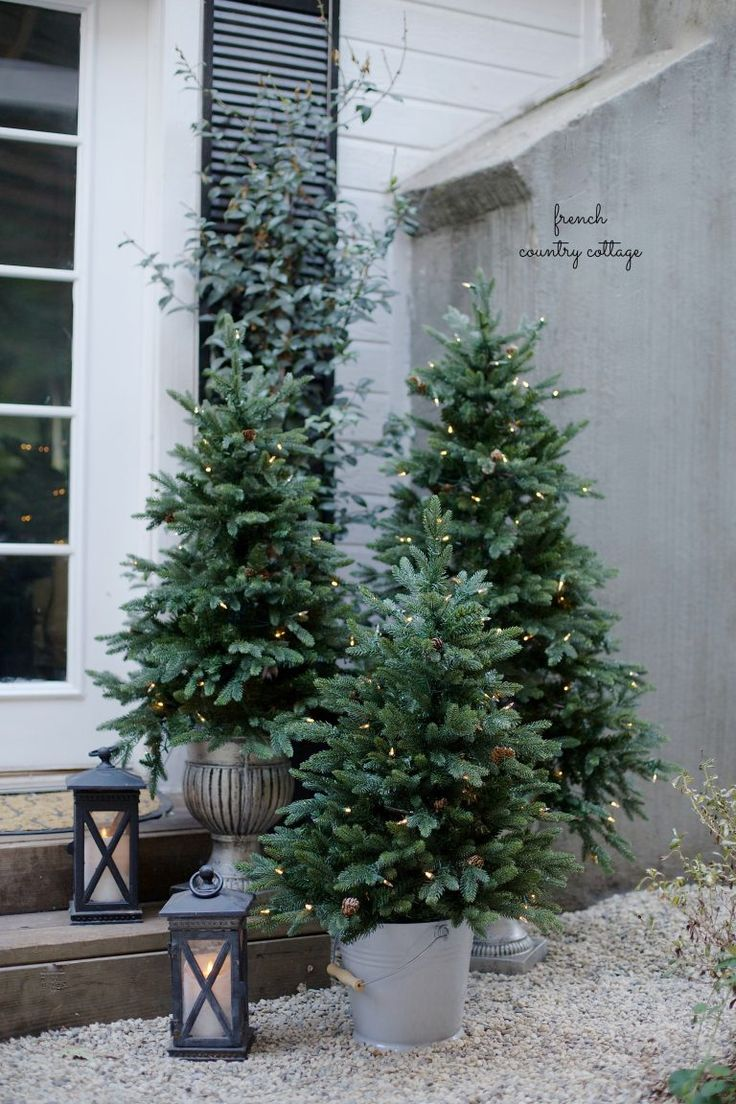 Three beautiful pre-lit potted trees to accentuate your patio.