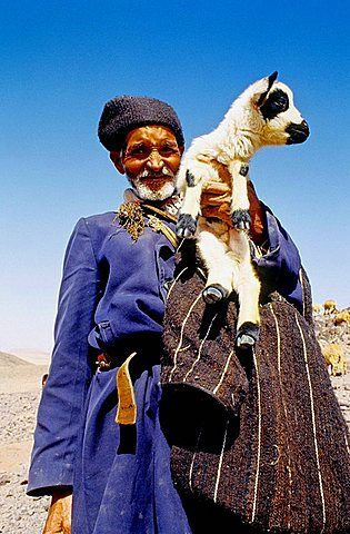 Shepherd . Dades valley . Atlas mountains . Morocco