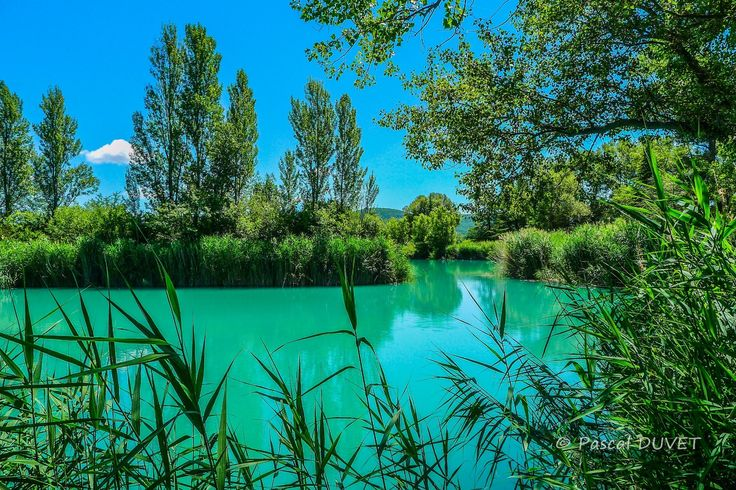 ORAA08 - Lac des Buissonnades, le lac de pêche - Village d'Oraison - Alpes de Haute Provence 04