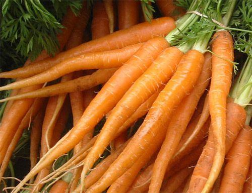 Beneficios de la zanahoria # Siempre nos encanta hablaros al menos una vez por semana de los beneficios de los mejores alimentos que nos brinda la tierra o los animales, por eso hoy nos centraremos en los beneficios que aporta …