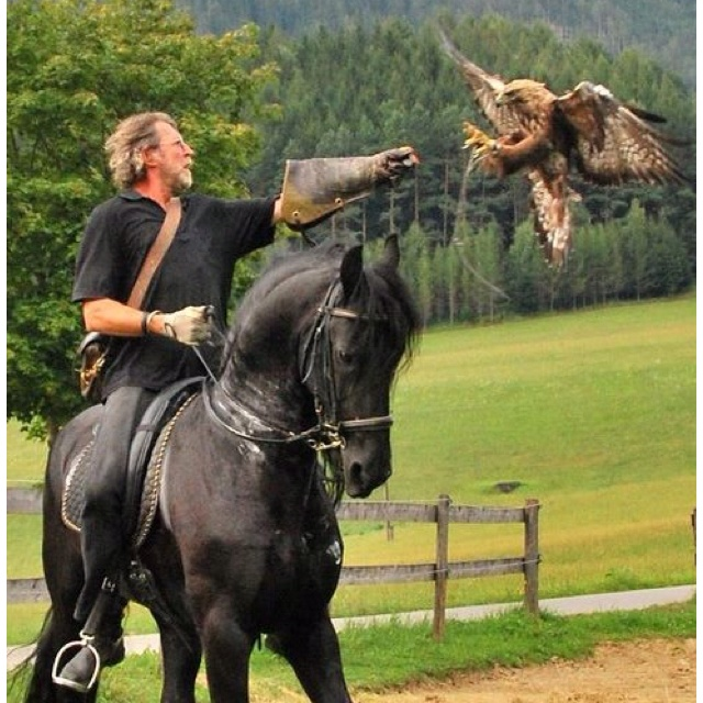 i miss theses days ... he is a lucky guy ...Falconry on horseback. Awesome!