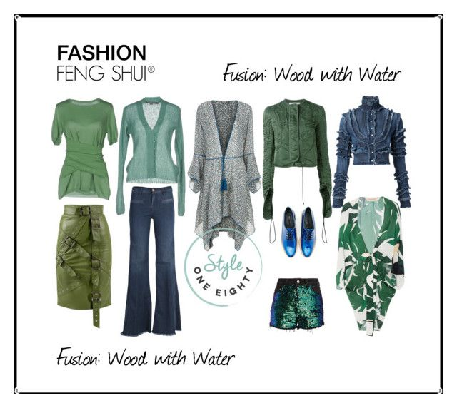 """""""Fashion Feng Shui: Wood with Water Fusion"""" by briarjb on Polyvore featuring ADRIANA DEGREAS, Ferra, 19.70, Moschino, Talitha, Miista, Dsquared2, J.W. Anderson and Don't Cry"""