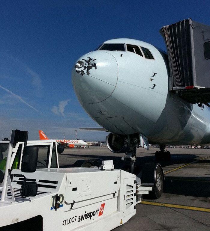 Air Canada Boeing 767 Flight 830 Suffers Bird Strike ...