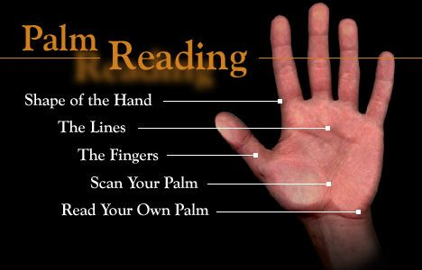 Palmistry 101: A Guide To Palm Reading For Enchanted Babes ...