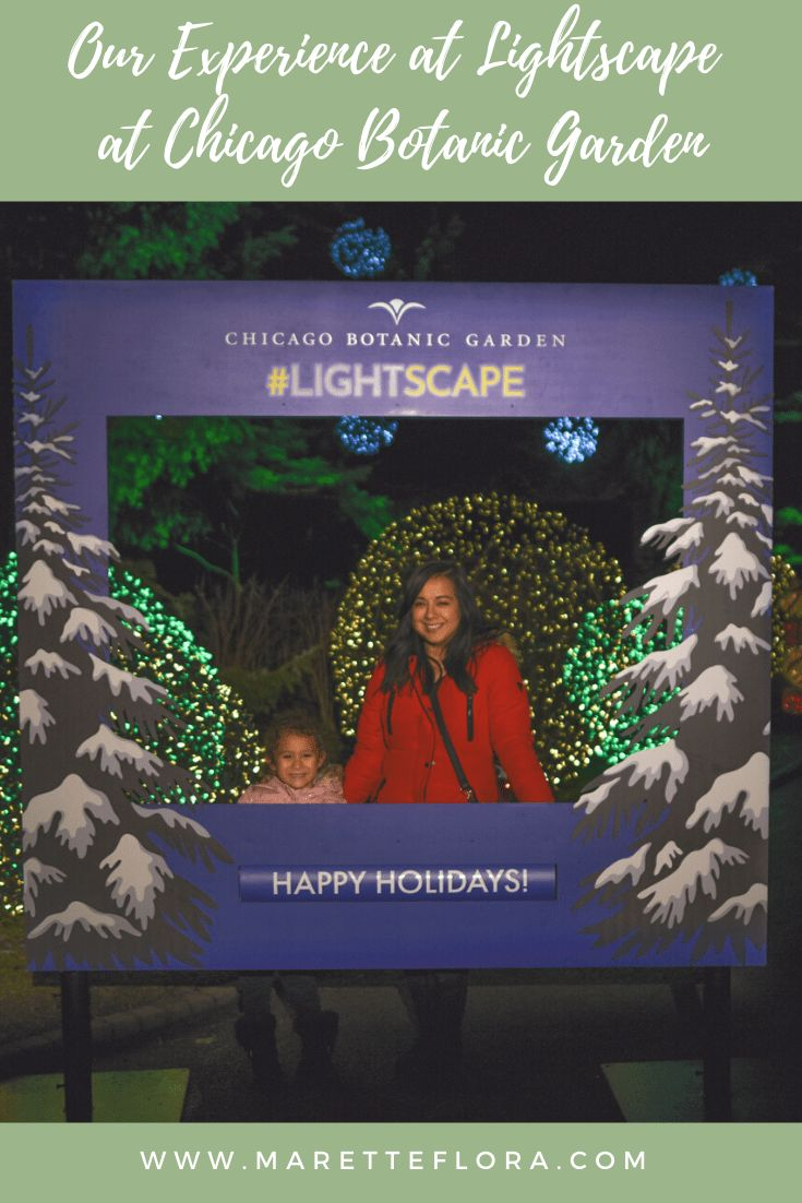 Our Visit to Lightscape at Chicago Botanic Garden (With