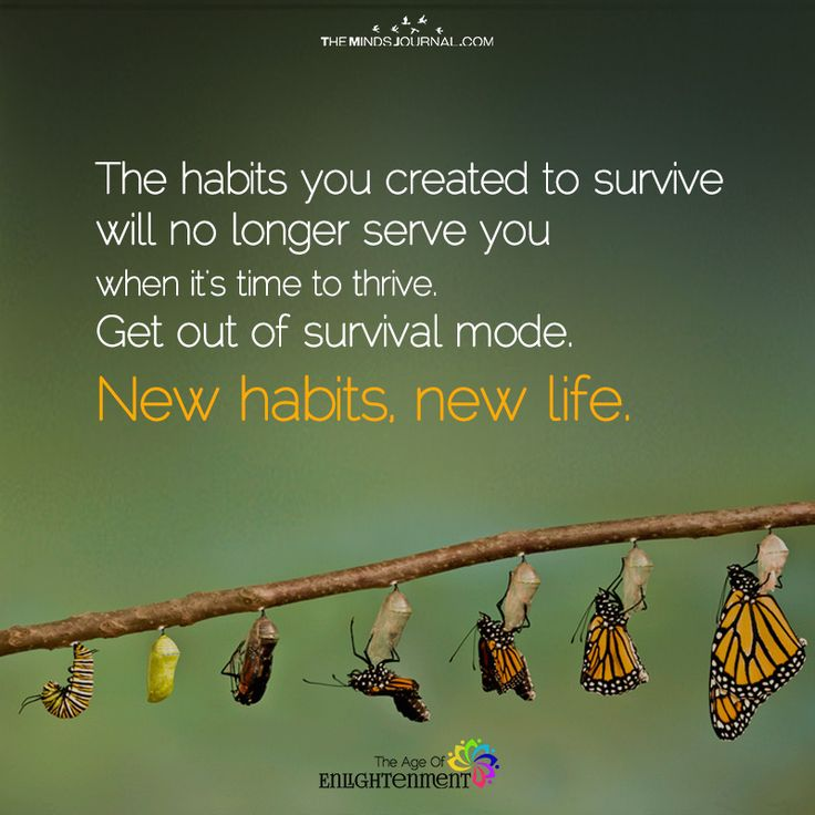 New habits, New Life - https://themindsjournal.com/new-habits-new-life/