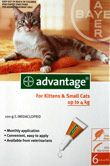 Advantage Flea Control Orange Box For Kittens And Cats Up To 4kg 6 Pack