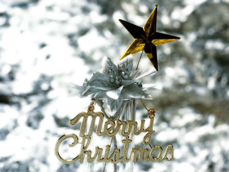 Lovely Christmas Celebration  #christmas