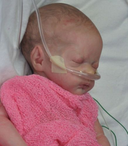 SELENA SAXTON ... Reborn Baby Doll ... S'Real Babies nursery   eBay