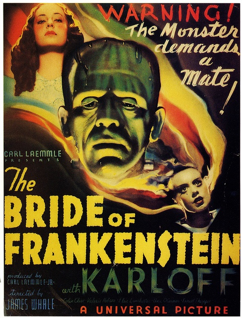 The Bride Of Frankenstein (1935). Recommended by Perry.