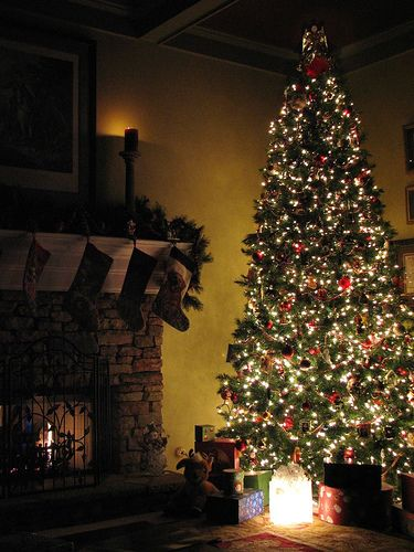 712 best images about christmas crafts decor on pinterest for Best looking christmas tree
