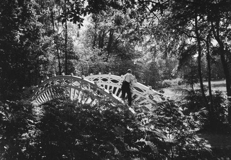 Kaarisilta Monrepos`n puistossa