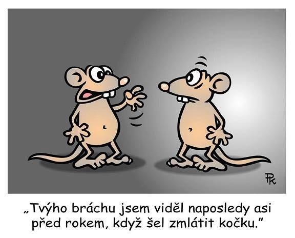 Pavel Kantorek  a jeho krásný humor