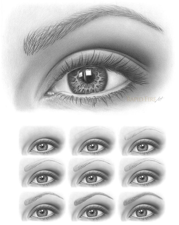 Detailed Tutorial: How to draw Eyebrows http://rapidfireart.com/2016/12/07/how-to-draw-eyebrows/