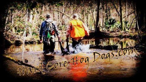 Hard Core Hog Dogs.com #hogdog #hardcorehogdogs #michaelspiehler #tiffanyspiehler #hunting #hoghunt #hogdoggear  #hogdogsupplies
