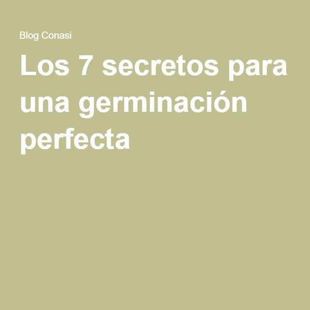 Los 7 secretos para una germinación perfecta