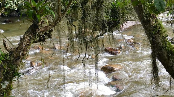 Rio Guatanfur, Manta, Cundinamarca