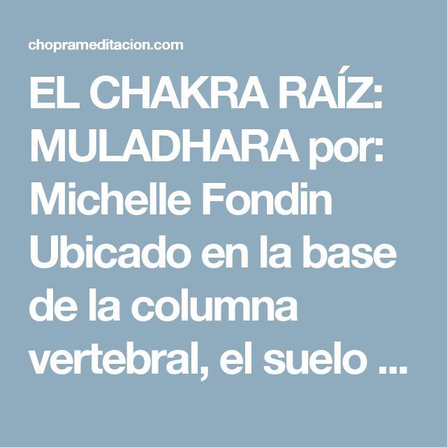 """EL CHAKRA RAÍZ: MULADHARA por: Michelle Fondin Ubicado en la base de la columna vertebral, el suelo pélvico y las primeras tres vértebras, el chakra raíz es responsable de tu sentido de confianza y seguridad en este viaje terrenal.  La palabra Muladhara se compone de dos palabras en sánscrito Mula, que significa """"raíz"""", y Adhara, que significa """"apoyo"""" o """"base""""  Este es el primero de los chakras de la materia. El equilibrio del chakra raíz genera bases sólidas para abrir todos los demás…"""