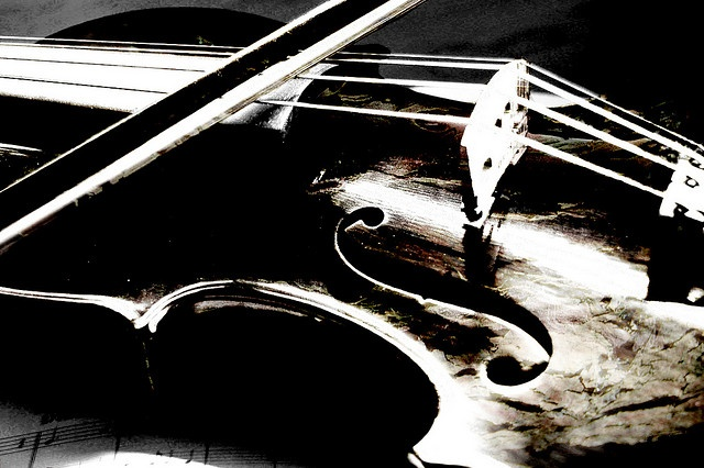 violin by Mark Gibson Photography, via Flickr
