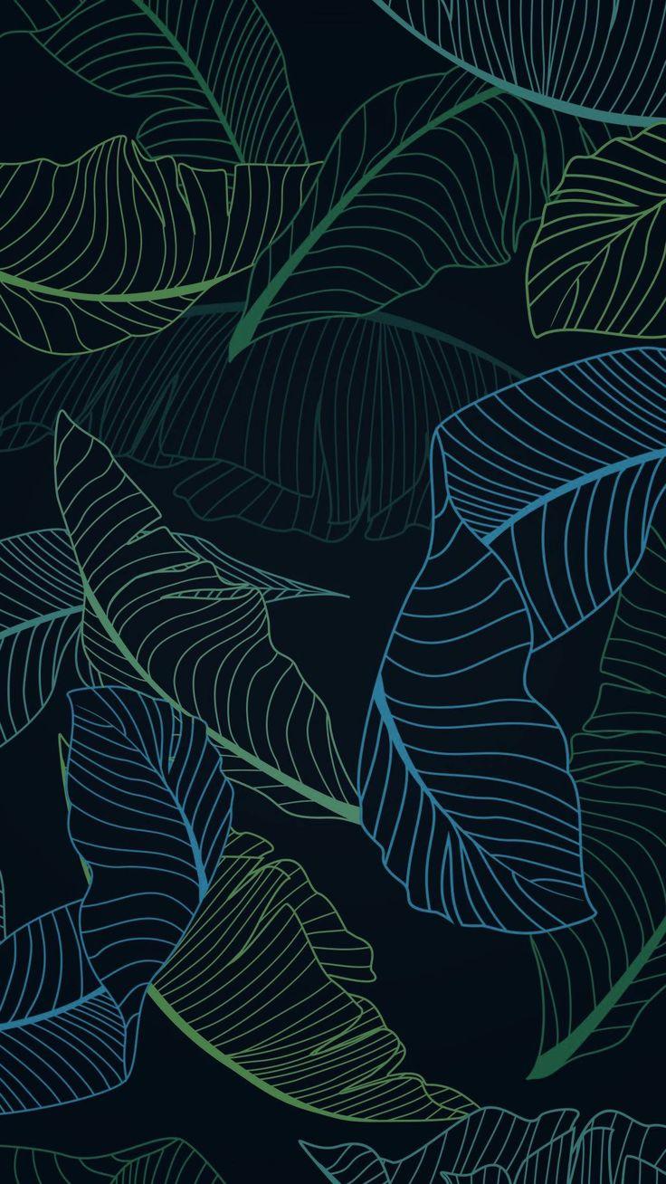 Leaf, Pattern, Organism, Botany, Design, Illustration