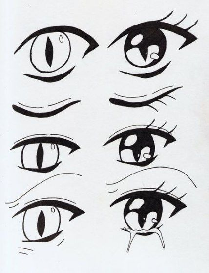 Best Cats Eye Drawing Anime 54 Ideas Cats Drawing Eye Cat