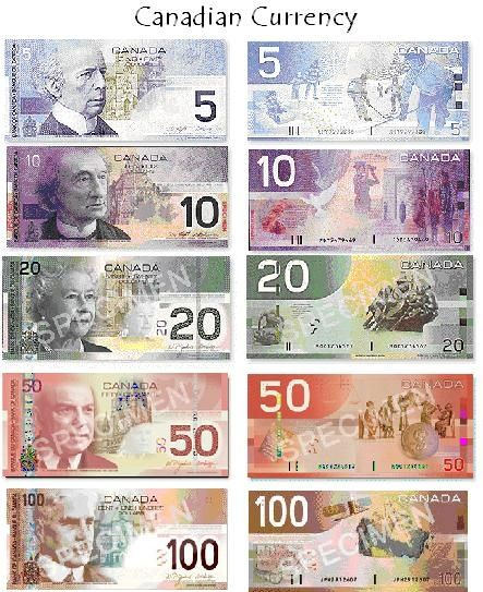 Pic of Canadian Money ~ could use in flash cards etc